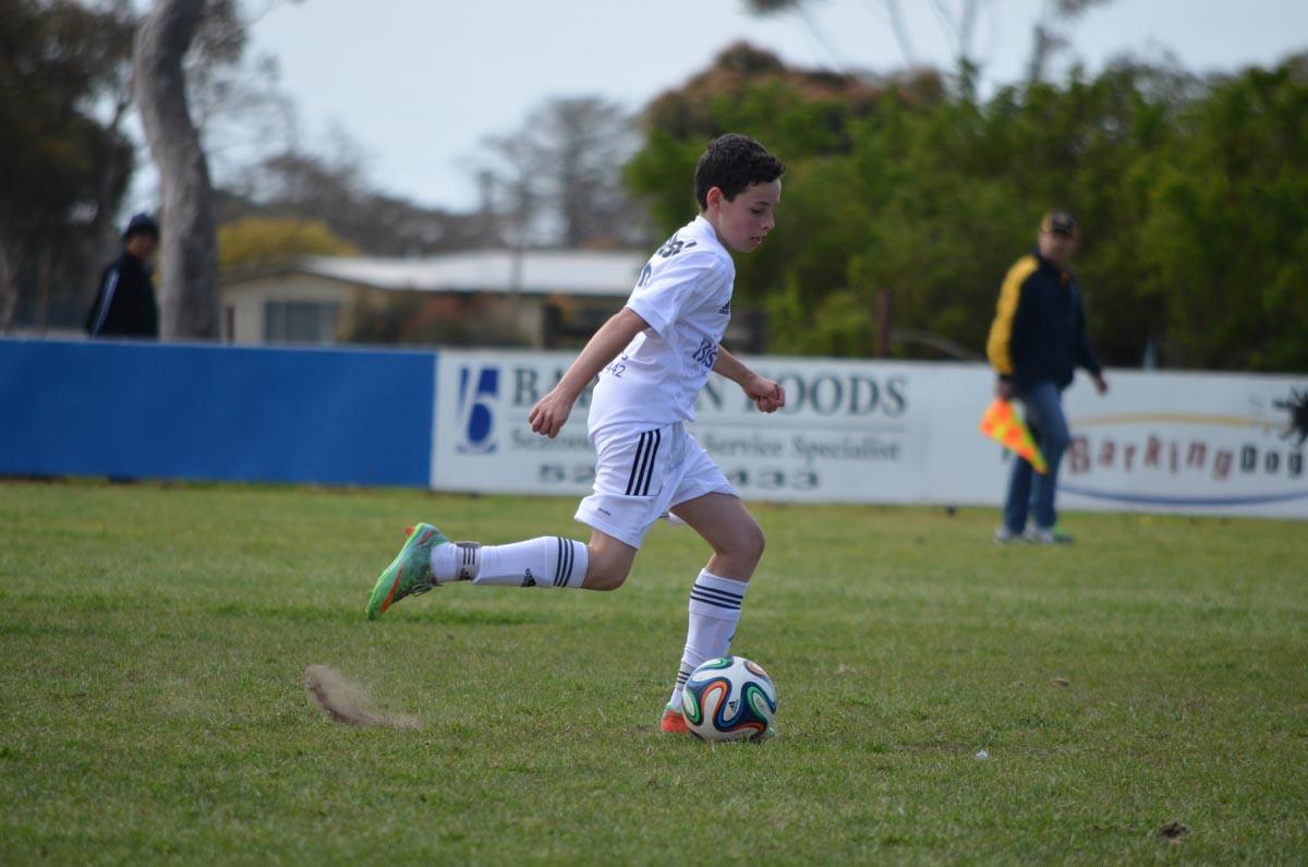 Junior Soccer Football Clubs Geelong Bell Park Sports Club
